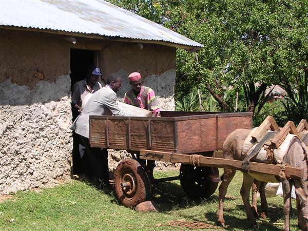 kenya-20040200